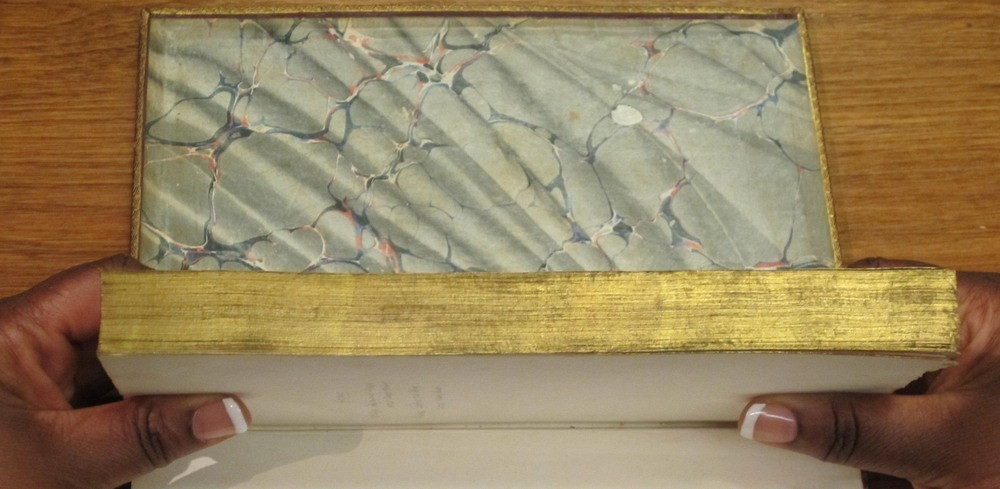 fore-edge-painting-4