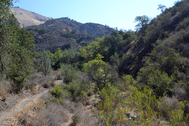 canyon trail