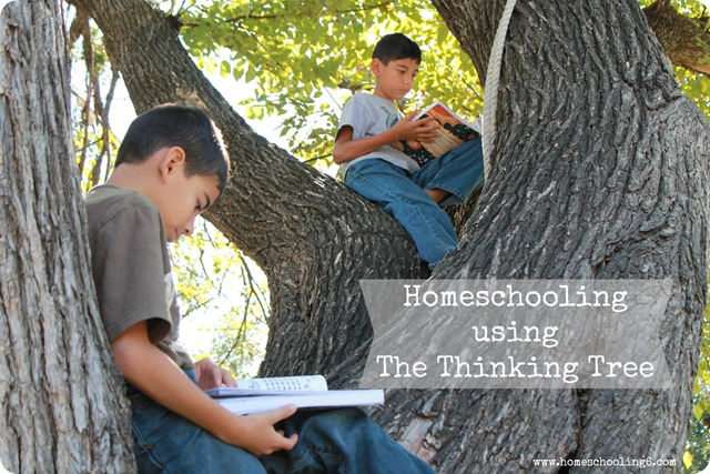 Homeschooling Using The Thinking Tree