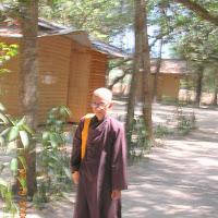 [DSTV-006] Thầy đi khất thực trong tu viện