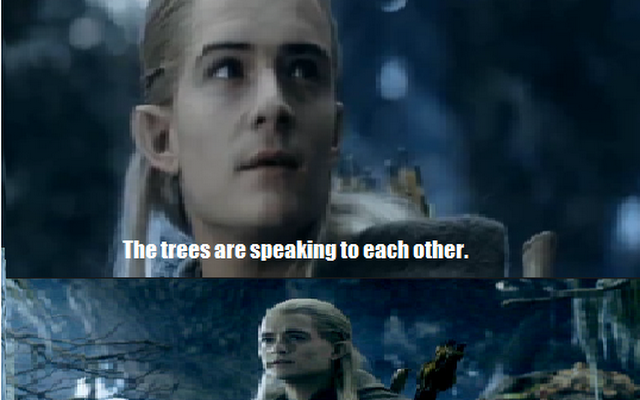 Legless Legolas Memes