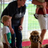 Fort Bend County Fair 2014 - 116_4294.JPG