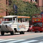 По городу ездят два типа экскурсионных автобусов: обычные двухэтажные и автобусы-амфибии