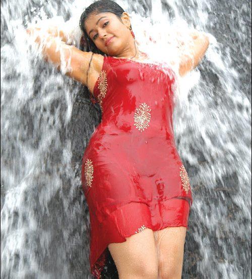 Actress Poonam Bajwa Hot Image in Wet Waterfall Pics