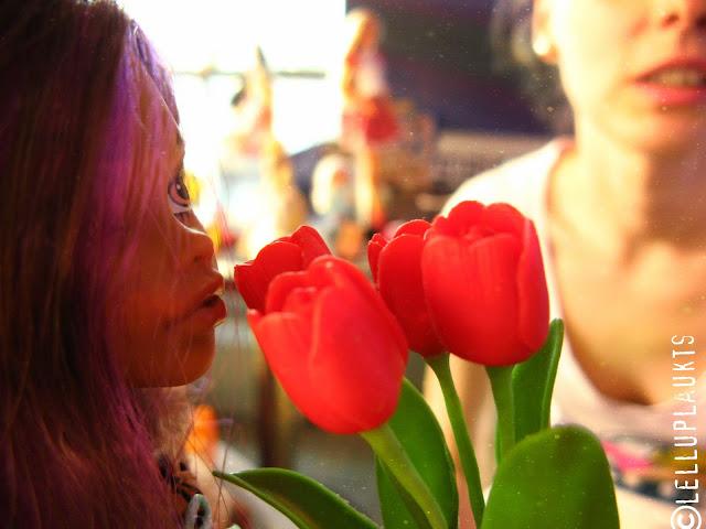 BILŽU ALBŪMS no tikšanās reizēm - АЛЬБОМ ФОТОГРАФИЙ с наших форумских встреч - Page 2 IMG_2515