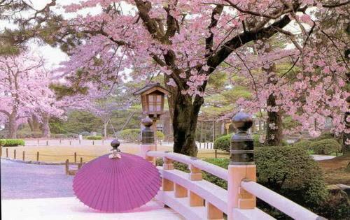 khí hậu ở Nhật