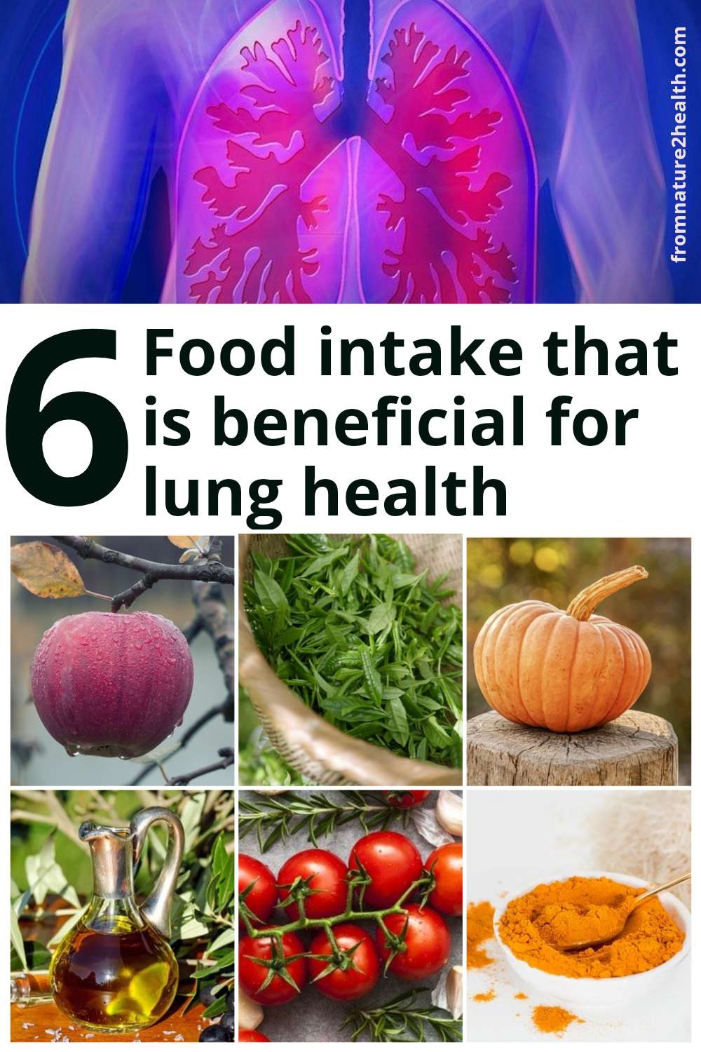 Apple, Green Tea, Olive Oil, Pumpkin, Tomatoes is  Food intake that is beneficial for lung health