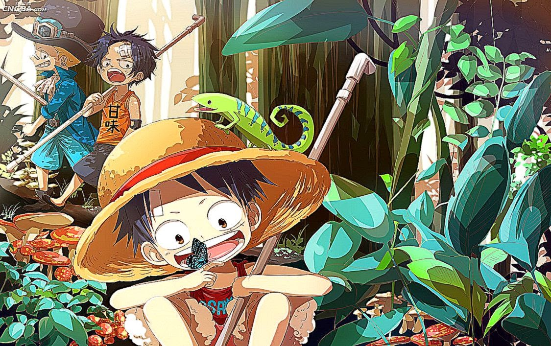 Ace Luffy And Sabo Hd Wallpaper | Photo Wallpapers