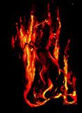koń Triglava - taniec mocy, olej, płótno, 50/70 cm własność prywatna