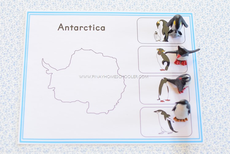 Antarctica Continent Activity Sheet