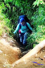 ngebolang gunung sumbing 1-4 agustus 2014 nik 17