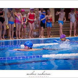 20161217-Little-Swimmers-IV-concurs-0030