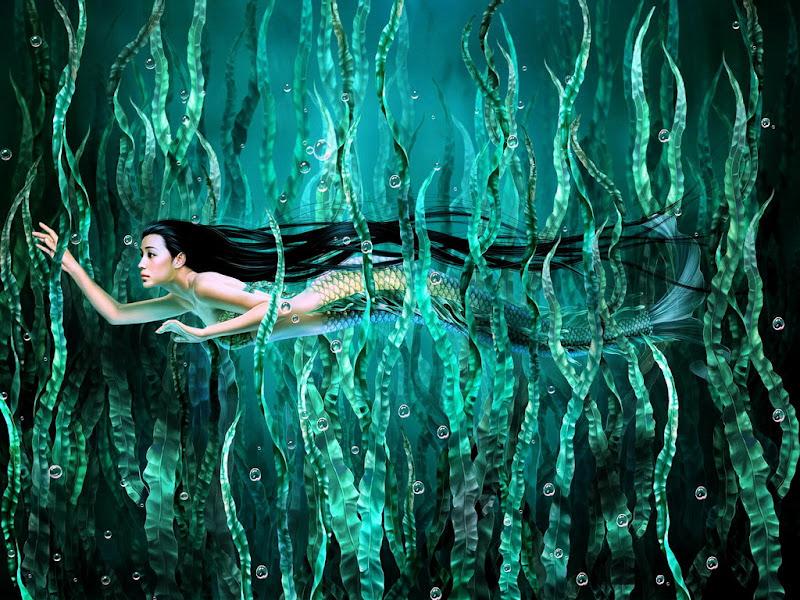 Mermaid Under Sea, Mermaids