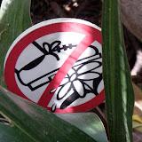 Знак не топчите цветы