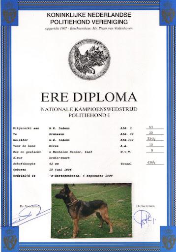 Ere Diploma Mirsa