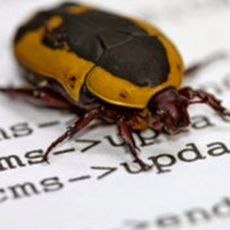 "Why do we call it a ""bug""? [Software] ~ The Mobile Spoon - Gil Bouhnick's Mobility Blog"