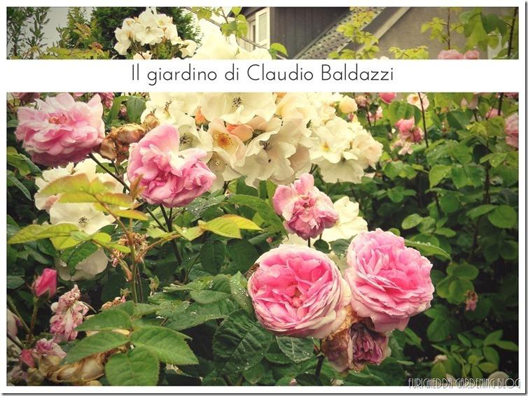 Il giardino di Claudio (1)
