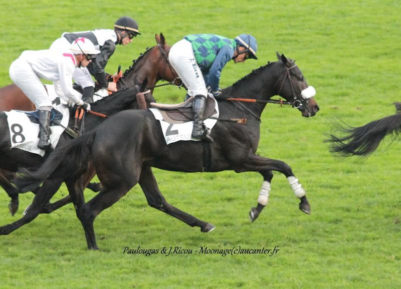 Photos Auteuil 7-11-2015 (48h de l'obstacle) IMG_6663