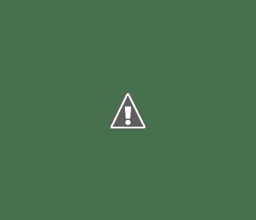 02 06 2013 13+copy - Кошки ))
