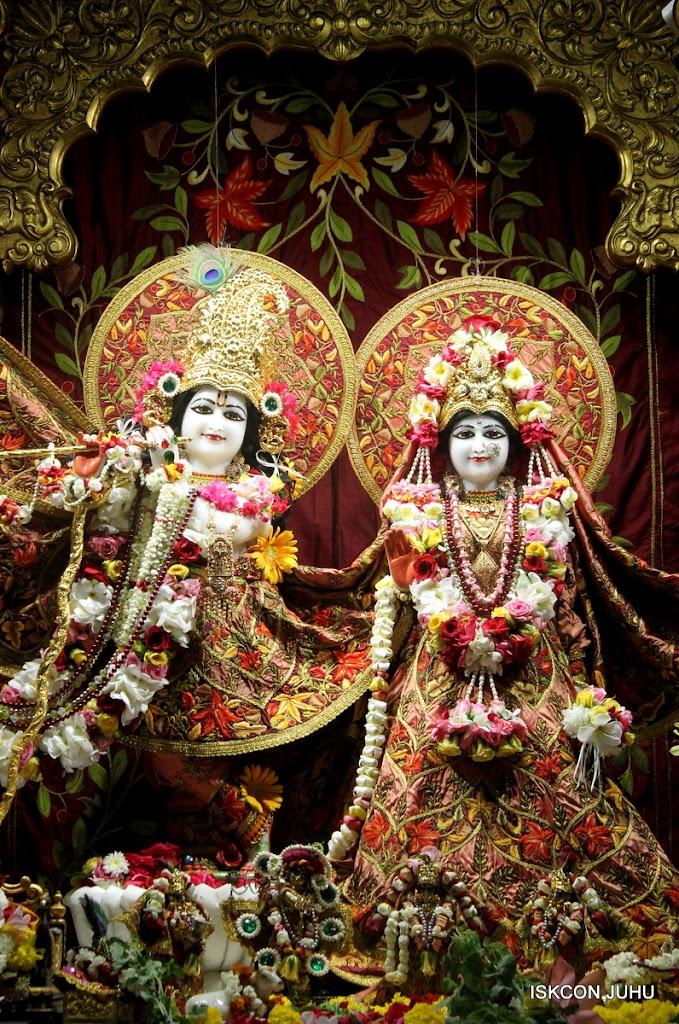 ISKCON Juhu Sringar Deity Darshan on 30th May 2016 (3)