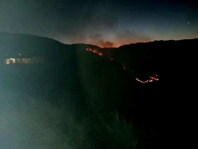 Logran controlar incendio forestal en Cabanaconde