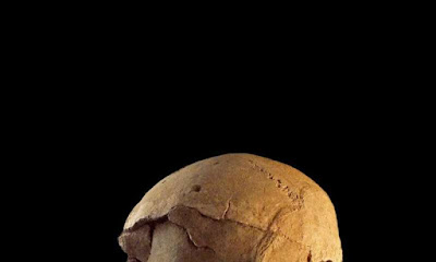 Discovery: oldest evidence of warfare in the world found in Africa