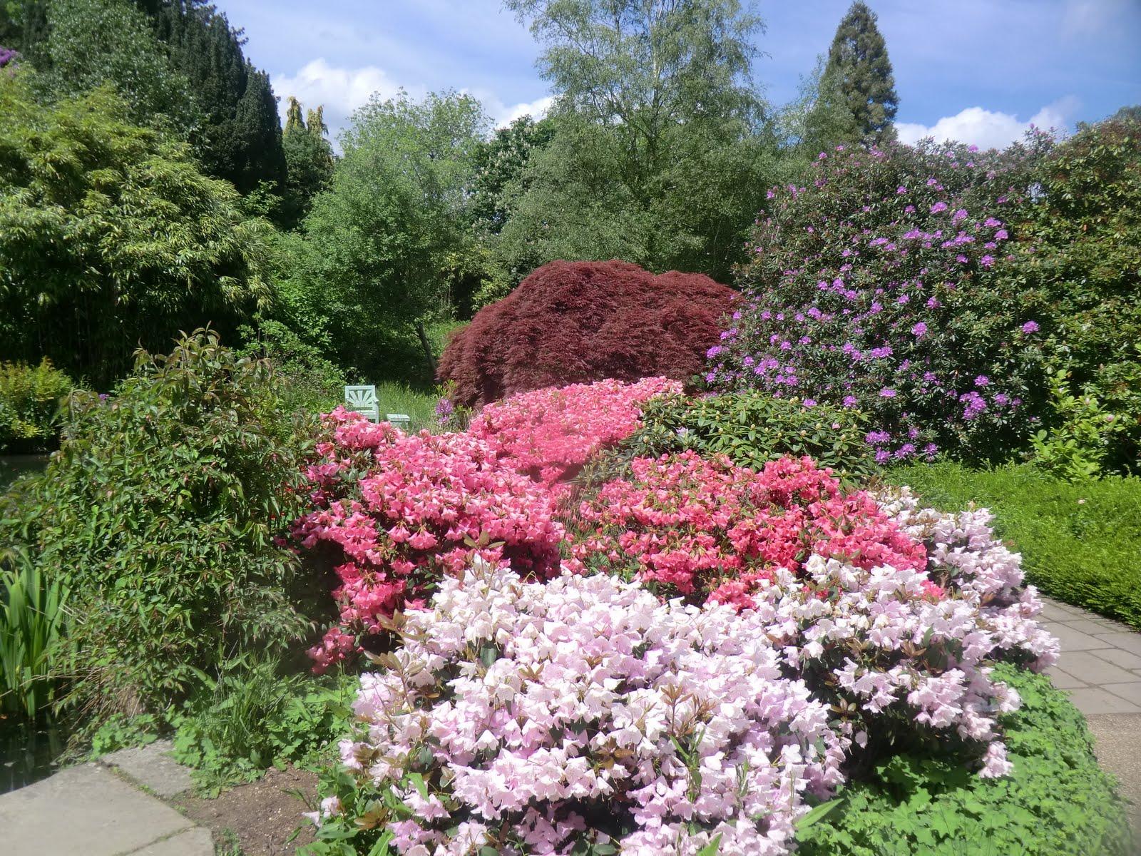 CIMG4373 Gardens, Chartwell