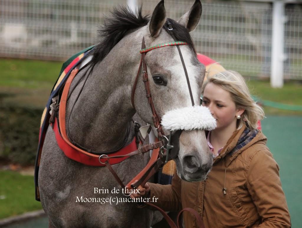 Photos Auteuil 1-03-2015 IMG_6868