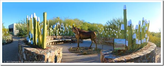 Arizona 2015—Tucson teaser 2