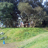 CAP VTT - 2014-02-23 - Trail du Vignoble Nantais