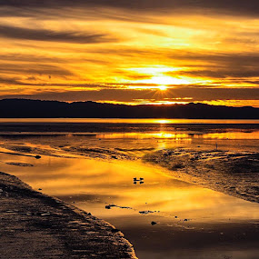 Golden sunset of reflections  by Ken Hall - Landscapes Beaches ( ken )
