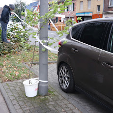20171028_Baum-Eigentümerversammlung-Thomas_Kahlix-0091
