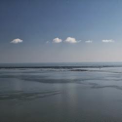 Coastal Sept 27, 2013 070 (8)