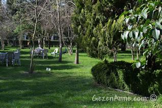 geniş yeşillik ortam, Uluabat Kuş Cenneti