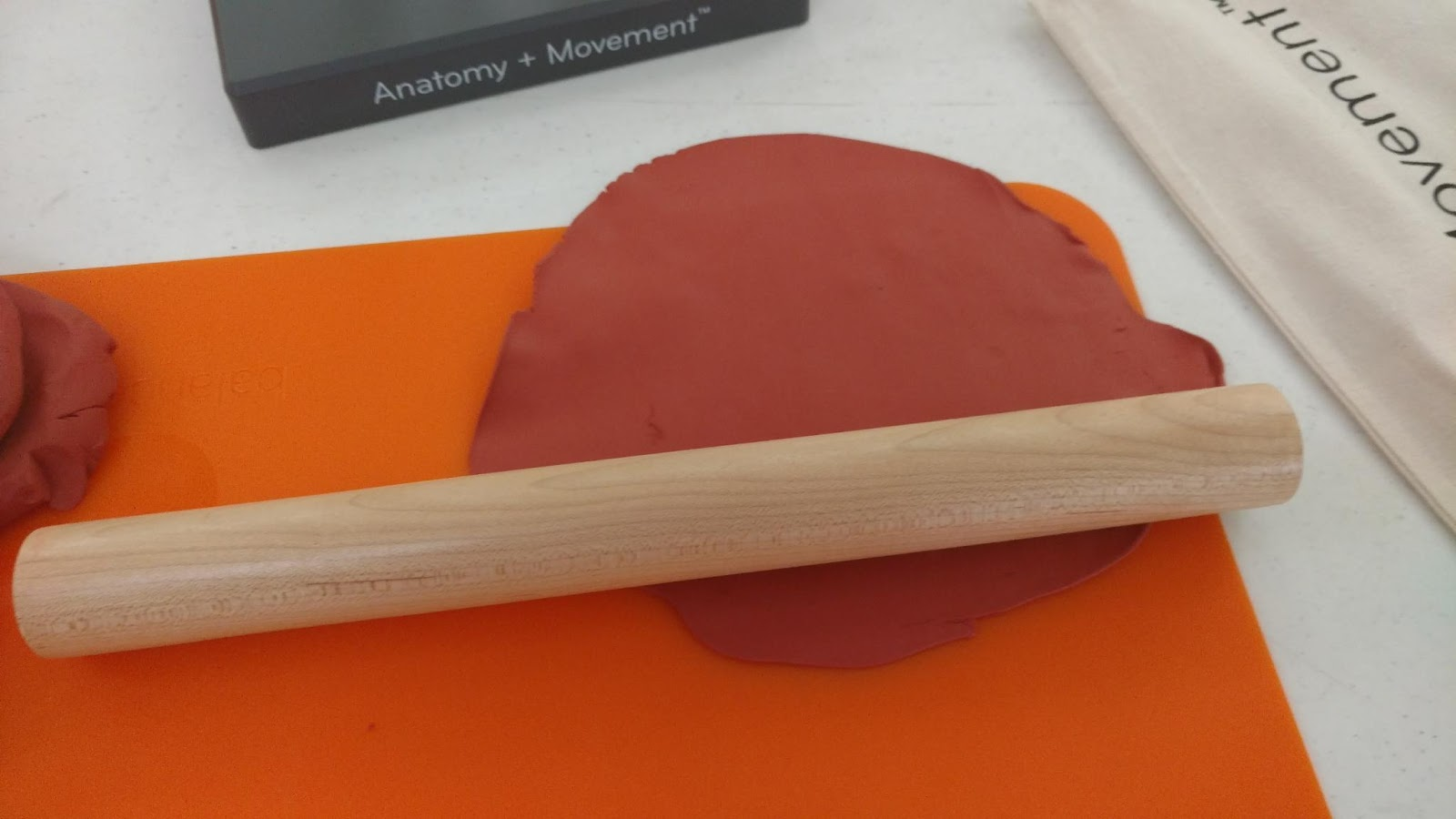 The Burrow: Anatomy in Clay