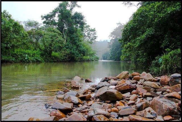 Sungai-Lembing-River