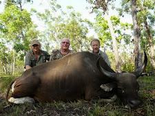 banteng-hunting-4.jpg