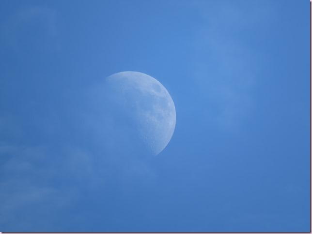 moonIMG_0659