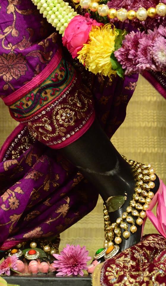 ISKCON GEV Deity Darshan 02 jan 2017 (5)