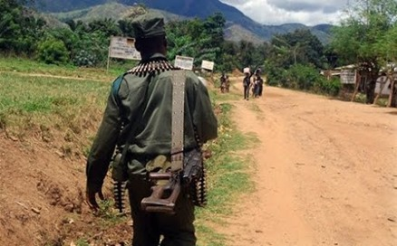 Milicien FDLR. Photo africa.jeuneafrique.com