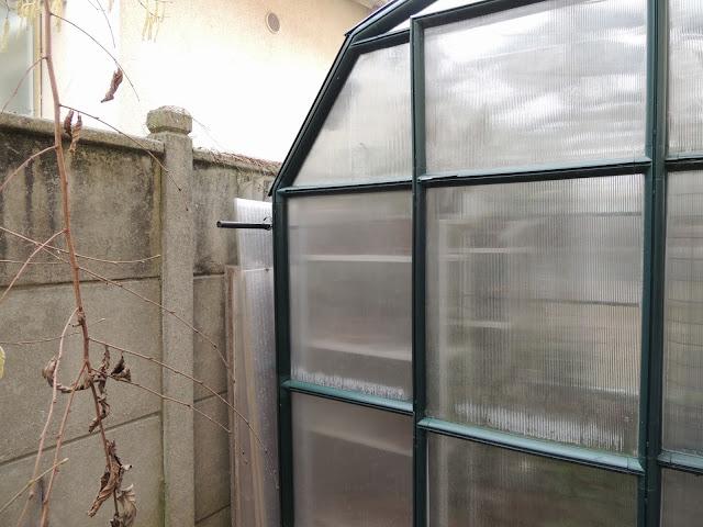 Lamentable armoire à orchidées DSCN1200
