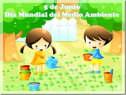 dia del medioambiente (16)