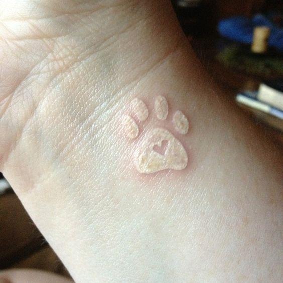 tinta_branca_pata_de_impresso_de_tatuagem