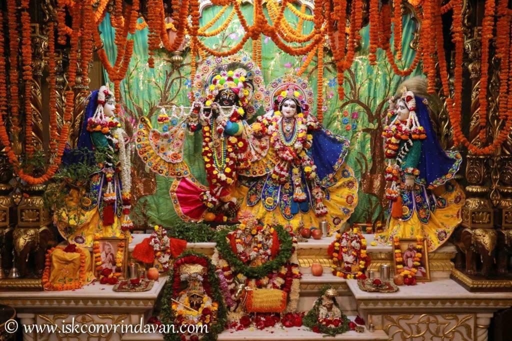 ISKCON Vrindavan Sringar Deity Darshan 20 Dec 2015 (15)
