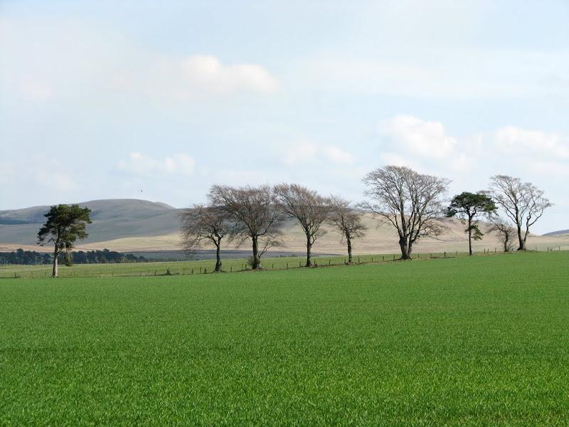 IMG_2802 - pentland hills