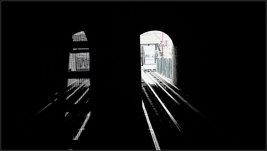 Graphisme  mélange de filtres Picasa _MG_4349