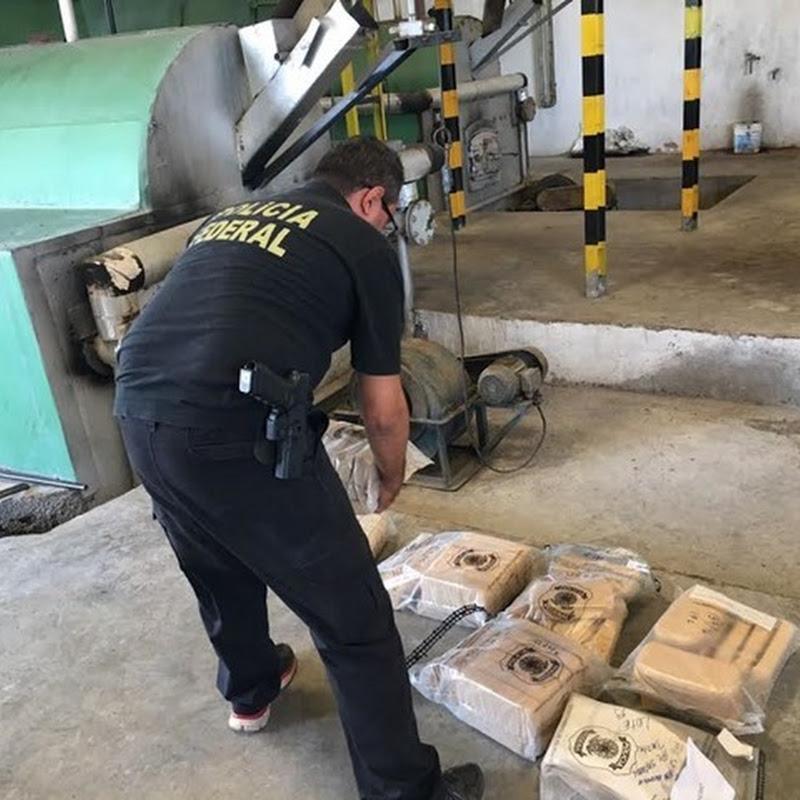 Polícia Federal incinera 61 Kg de cocaína em Mossoró