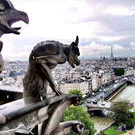 Sad day by Nelida Dot - Buildings & Architecture Statues & Monuments ( roof, paris, panorama, statue, notre dame, architecture,  )