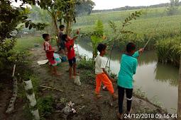 Mina Padi, Optimalisasi Tanah Sawah Petani