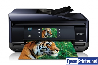 How to reset Epson XP-800 printer